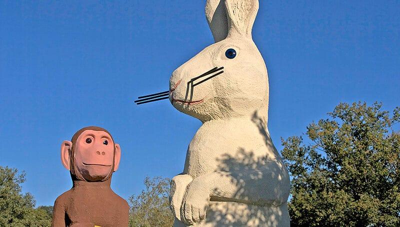 Beslut om apan och kaninen