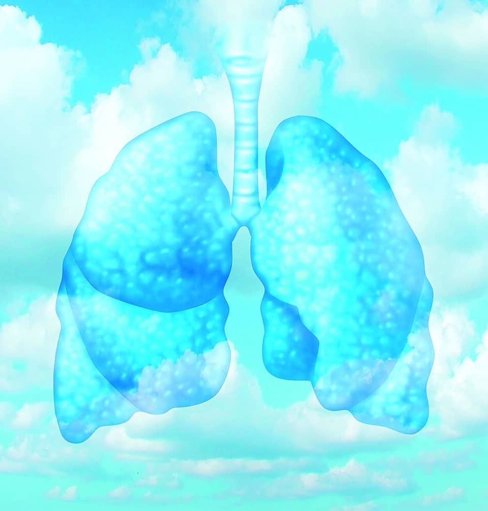 Frisk luft och friska lungor